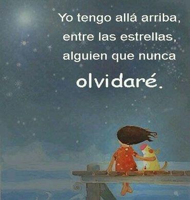 """imagen de animación con una niña y su perro sentados en al final de un puente de madera en el mar mirando el cielo nocturno estrellado con el texto """"Yo tengo allá arriba, entre las estrellas, alguien que nunca olvidaré"""""""